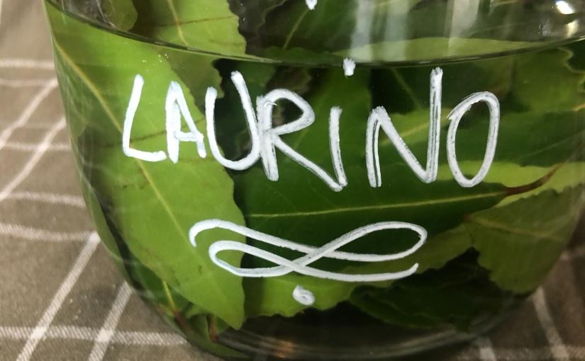 Laurino: Liqueur noble delaurier-sauce